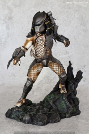 005 PREDATOR Diamond Select recensione